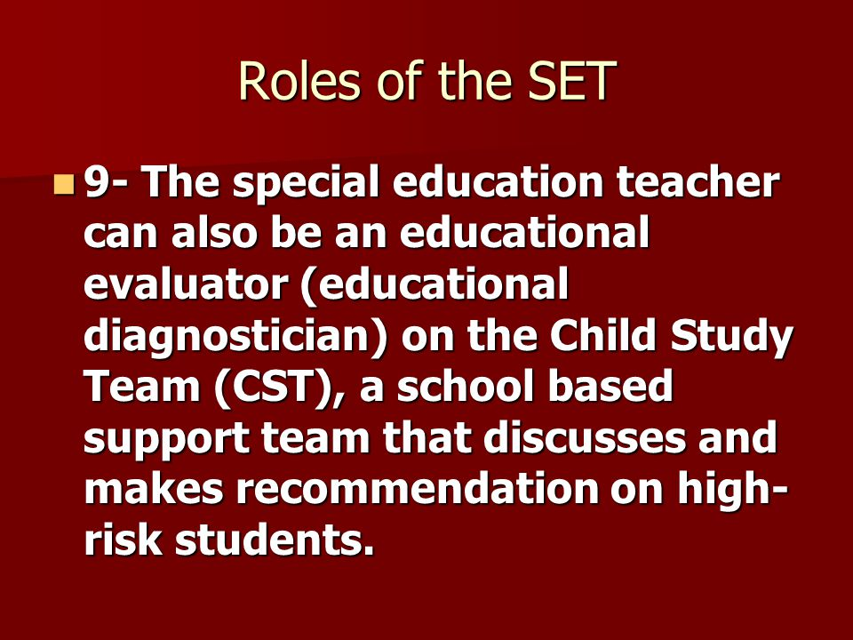 roles and responsibilities of the special