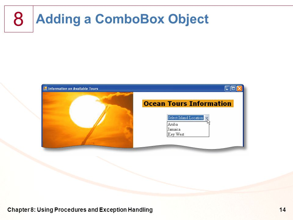 8 Chapter 8: Using Procedures and Exception Handling14 Adding a ComboBox Object