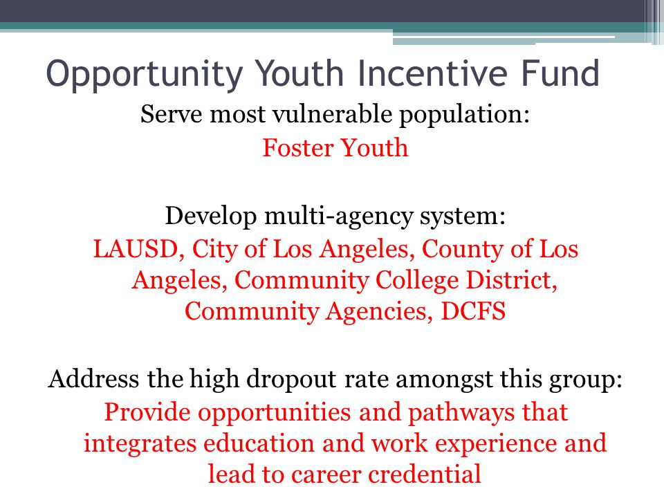Opportunity Youth Incentive Fund Serve most vulnerable population: Foster Youth Develop multi-agency system: LAUSD, City of Los Angeles, County of Los Angeles, Community College District, Community Agencies, DCFS Address the high dropout rate amongst this group: Provide opportunities and pathways that integrates education and work experience and lead to career credential