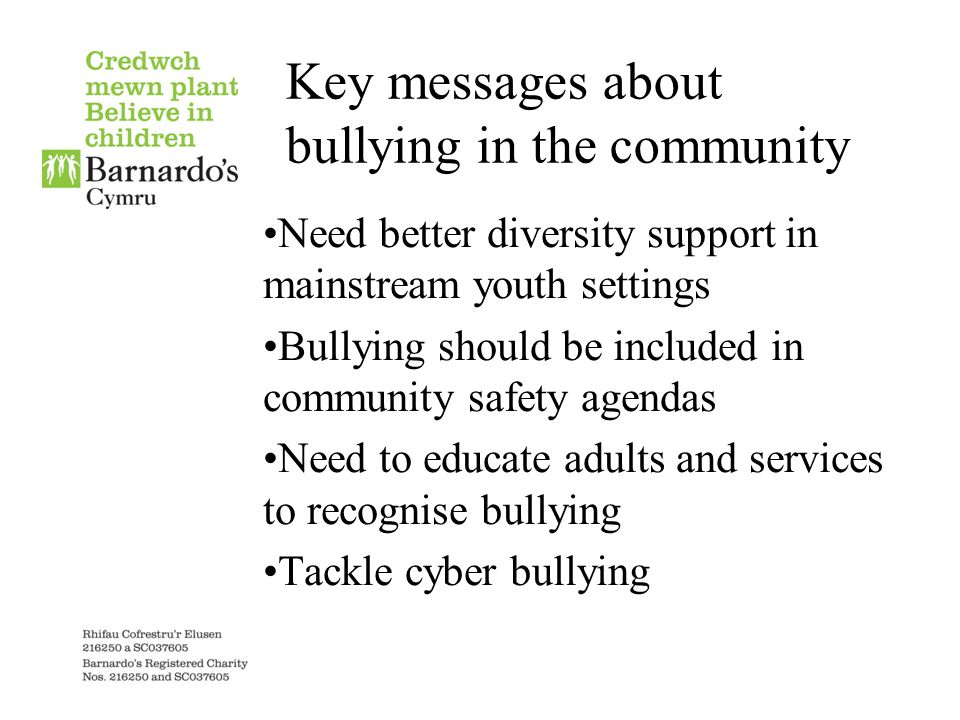 Key messages about bullying in the community Need better diversity support in mainstream youth settings Bullying should be included in community safety agendas Need to educate adults and services to recognise bullying Tackle cyber bullying