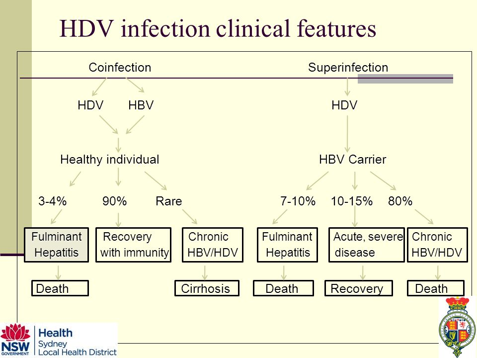 HDV infection clinical features Coinfection Superinfection Coinfection Superinfection HDV HBV HDV HDV HBV HDV Healthy individual HBV Carrier Healthy individual HBV Carrier 3-4% 90% Rare 7-10% 10-15% 80% 3-4% 90% Rare 7-10% 10-15% 80% Fulminant Recovery Chronic Fulminant Acute, severe Chronic Fulminant Recovery Chronic Fulminant Acute, severe Chronic Hepatitis with immunity HBV/HDV Hepatitis disease HBV/HDV Hepatitis with immunity HBV/HDV Hepatitis disease HBV/HDV Death Cirrhosis Death Recovery Death Death Cirrhosis Death Recovery Death