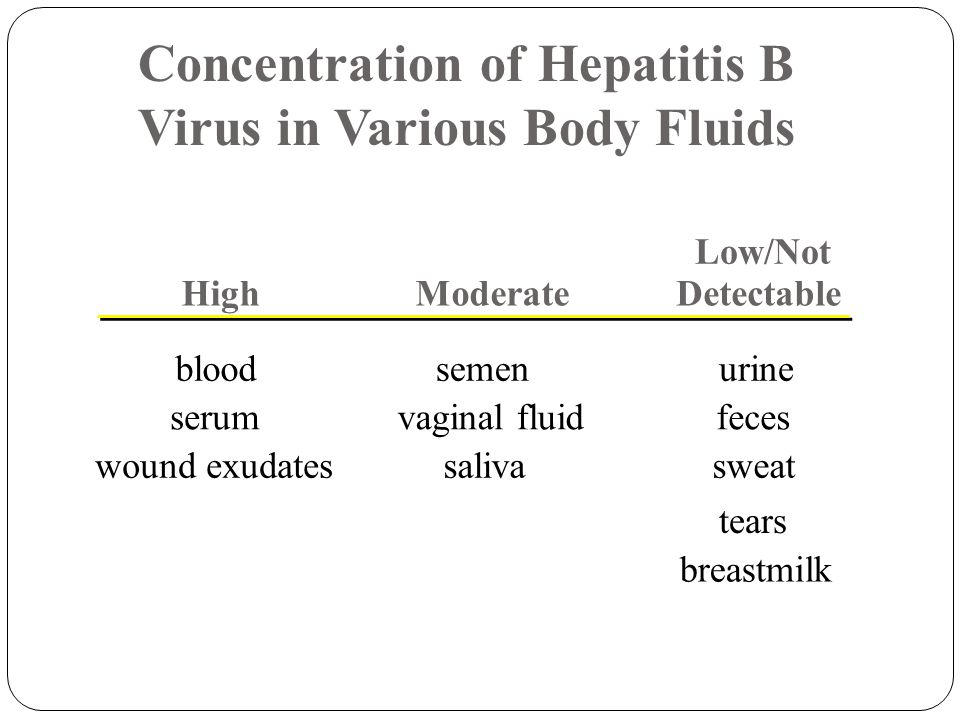 HighModerate Low/Not Detectable bloodsemenurine serumvaginal fluidfeces wound exudatessalivasweat tears breastmilk Concentration of Hepatitis B Virus in Various Body Fluids
