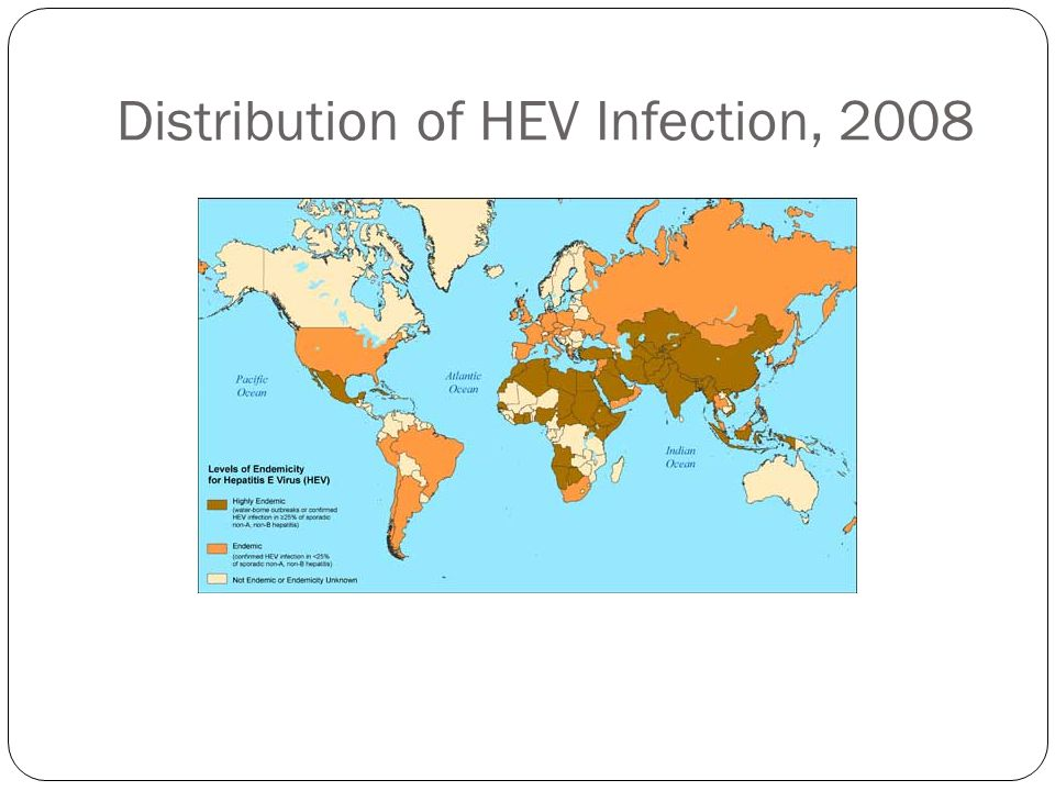 Distribution of HEV Infection, 2008