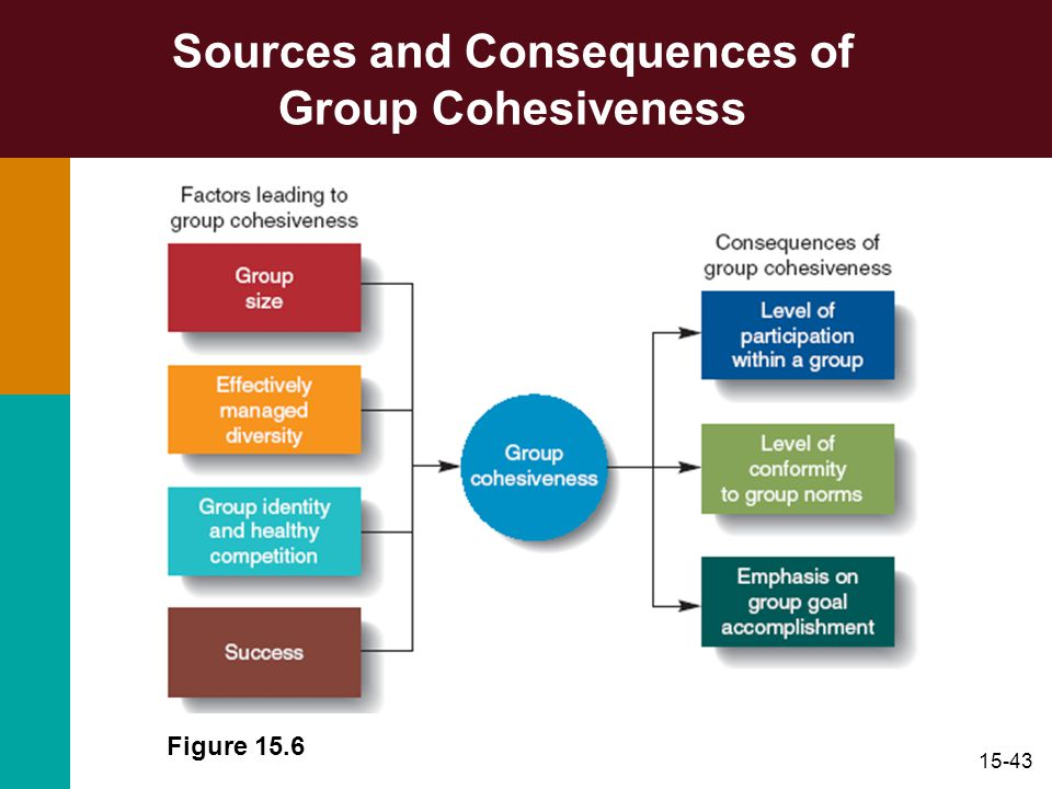 15-43 Sources and Consequences of Group Cohesiveness Figure 15.6