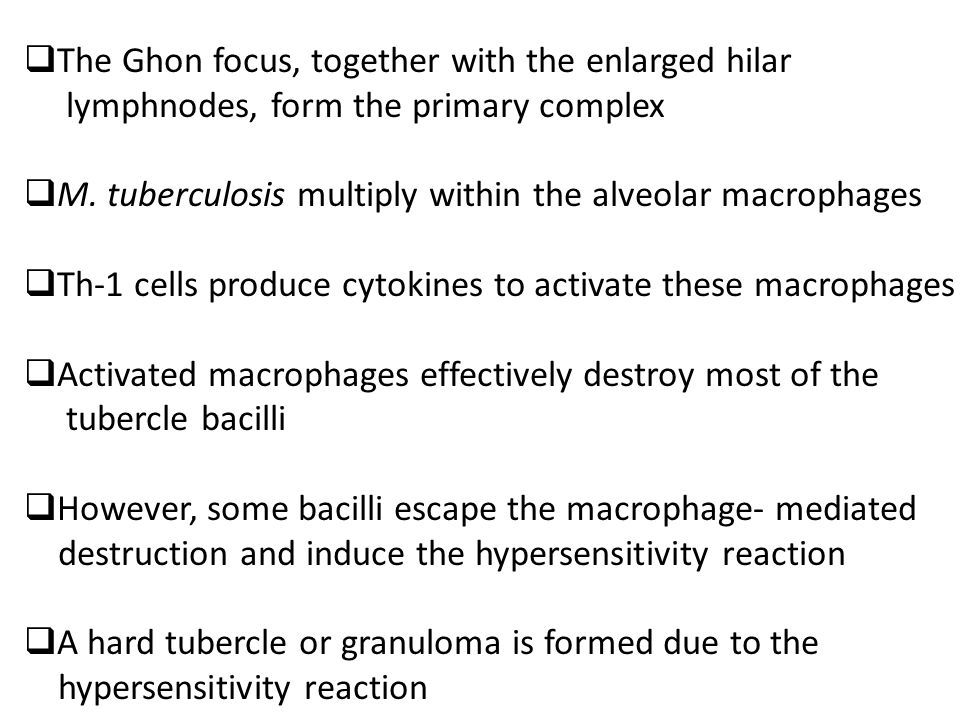  The Ghon focus, together with the enlarged hilar lymphnodes, form the primary complex  M.