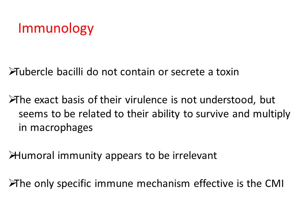 Immunology  Tubercle bacilli do not contain or secrete a toxin  The exact basis of their virulence is not understood, but seems to be related to their ability to survive and multiply in macrophages  Humoral immunity appears to be irrelevant  The only specific immune mechanism effective is the CMI