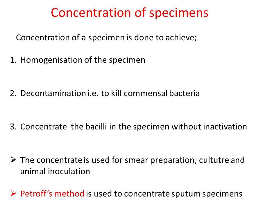 Concentration of specimens Concentration of a specimen is done to achieve; 1.Homogenisation of the specimen 2.Decontamination i.e.