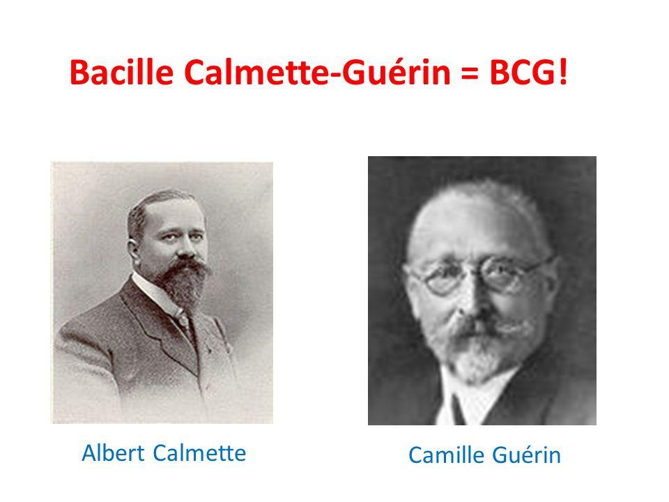 Bacille Calmette-Guérin = BCG! Albert Calmette Camille Guérin