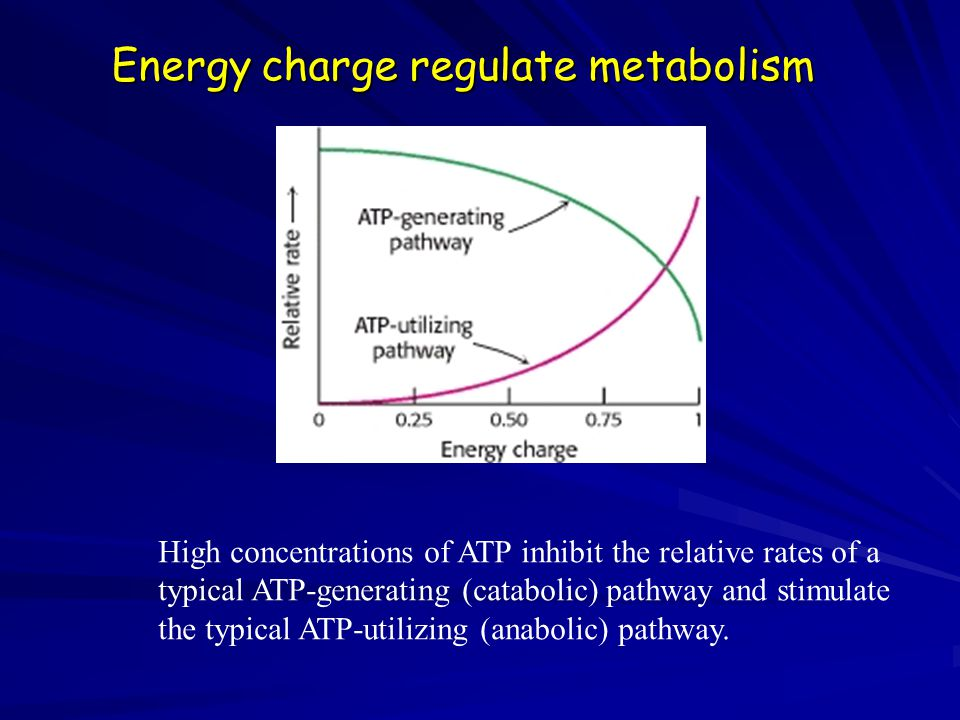 Energy charge regulate metabolism High concentrations of ATP inhibit the relative rates of a typical ATP-generating (catabolic) pathway and stimulate the typical ATP-utilizing (anabolic) pathway.