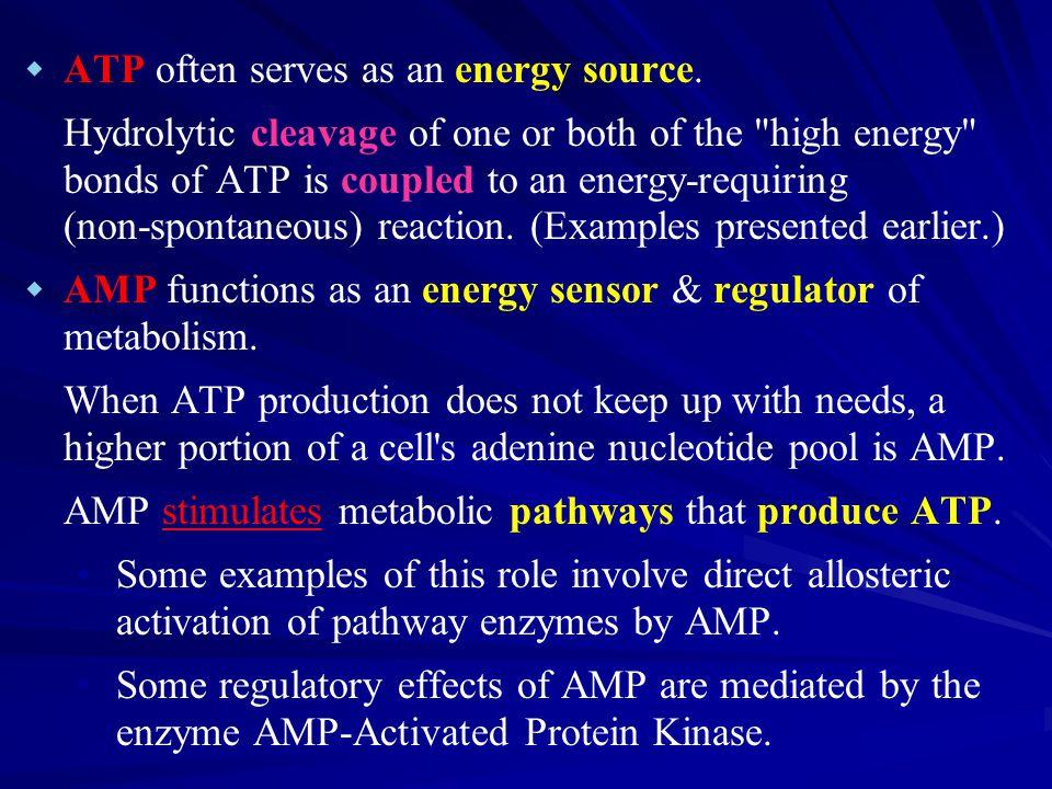   ATP often serves as an energy source.