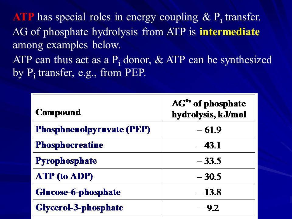 ATP has special roles in energy coupling & P i transfer.