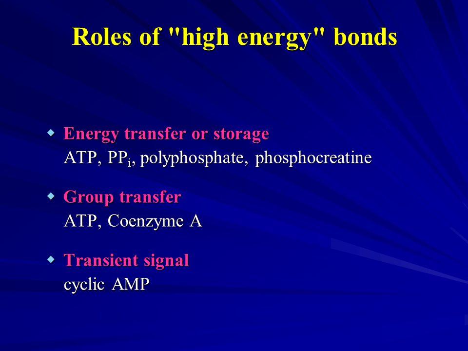  Energy transfer or storage ATP, PP i, polyphosphate, phosphocreatine ATP, PP i, polyphosphate, phosphocreatine  Group transfer ATP, Coenzyme A ATP, Coenzyme A  Transient signal cyclic AMP cyclic AMP Roles of high energy bonds