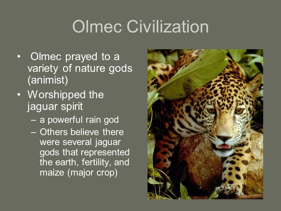 Olmec Civilization Olmec prayed to a variety of nature gods (animist) Worshipped the jaguar spirit –a powerful rain god –Others believe there were several jaguar gods that represented the earth, fertility, and maize (major crop)