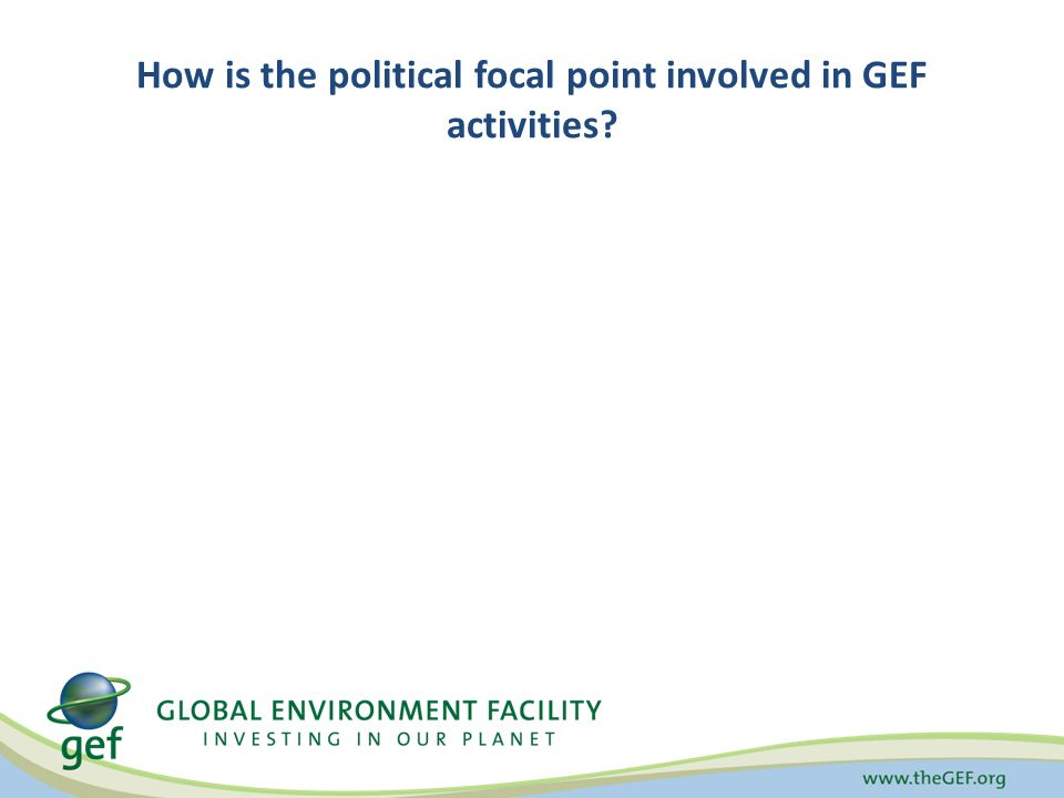 How is the political focal point involved in GEF activities