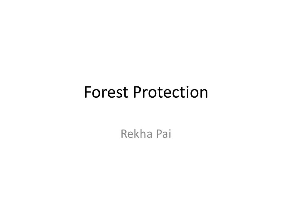 Forest Protection Rekha Pai