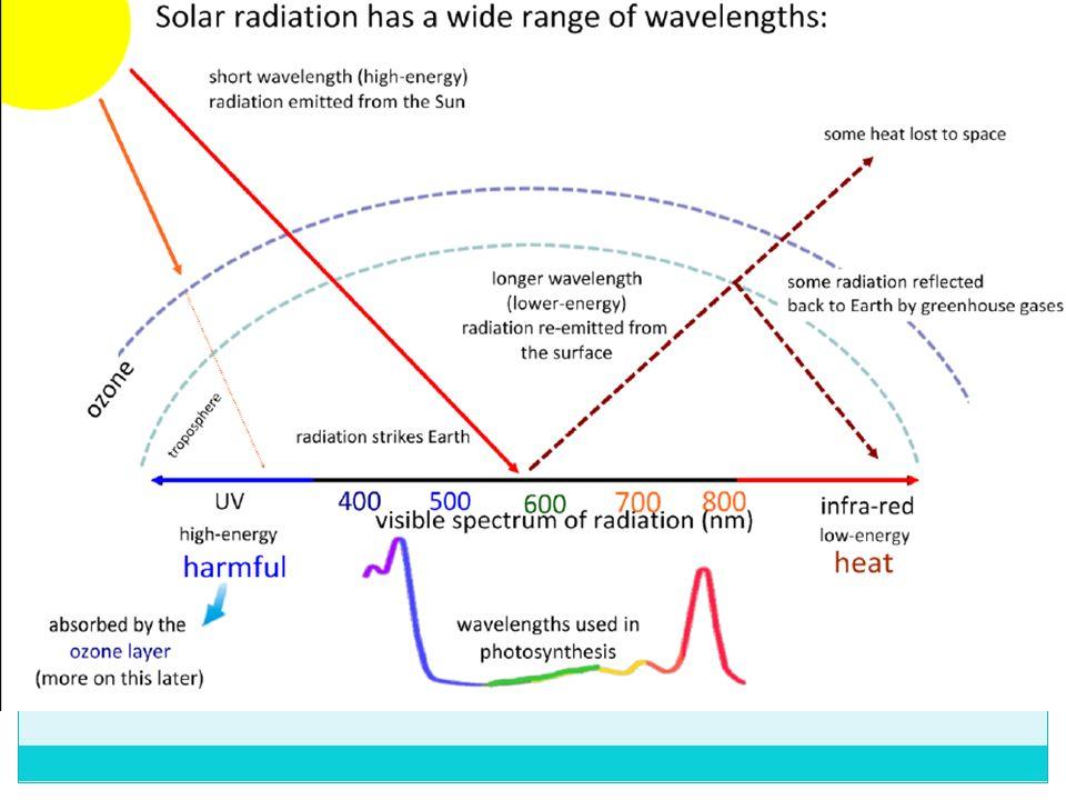 ib biology greenhouse effect notes