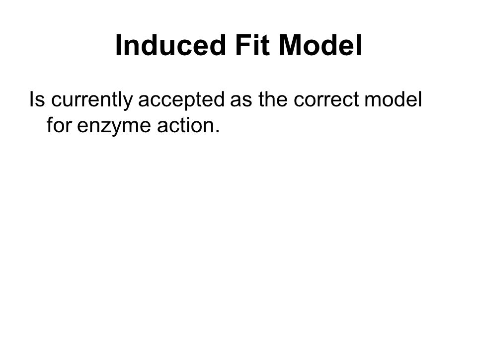 Induced Fit Model Is currently accepted as the correct model for enzyme action.