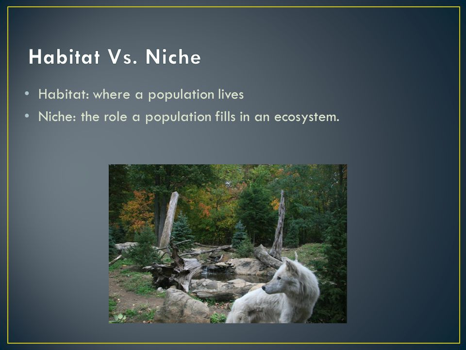 Habitat: where a population lives Niche: the role a population fills in an ecosystem.