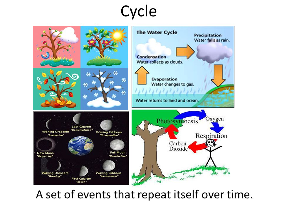 Cycle A set of events that repeat itself over time.