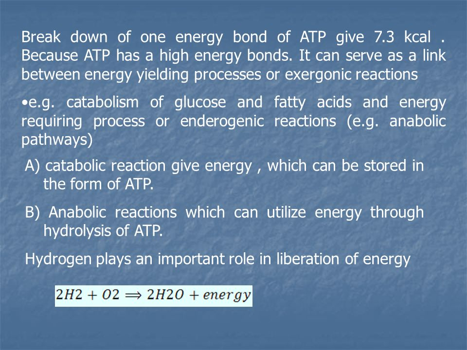 Break down of one energy bond of ATP give 7.3 kcal.