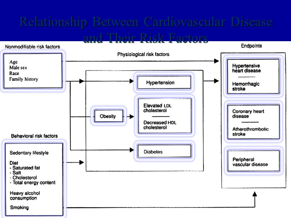 Relationship Between Cardiovascular Disease and Their Risk Factors