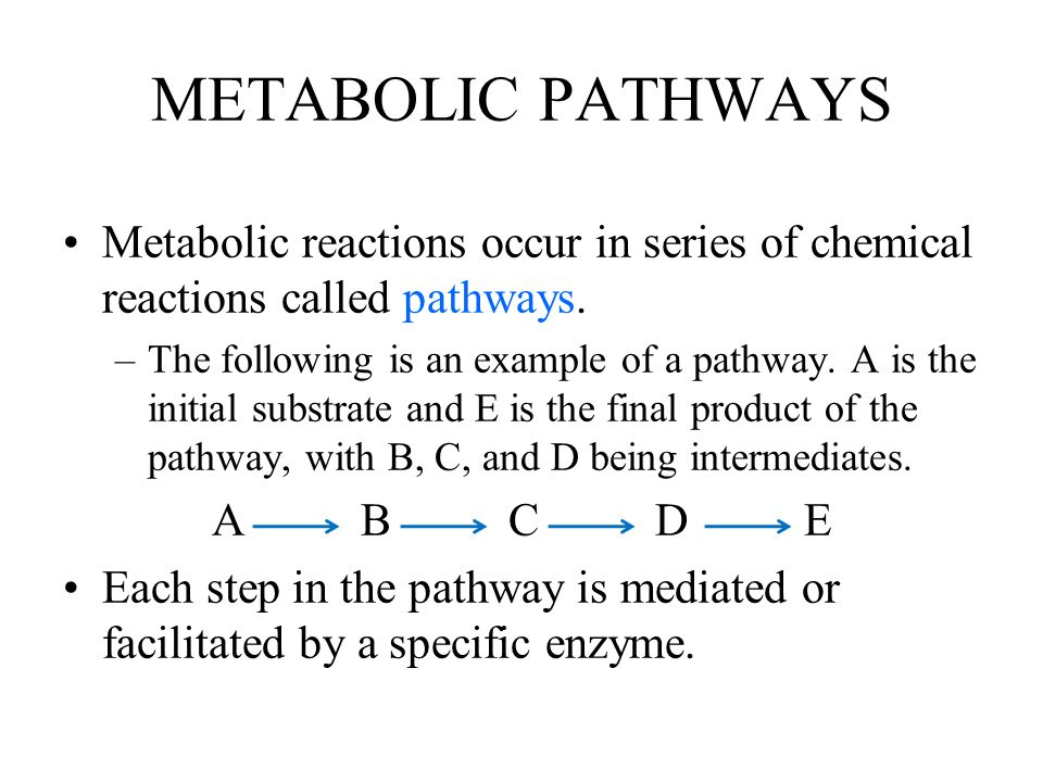 METABOLIC PATHWAYS Metabolic reactions occur in series of chemical reactions called pathways.