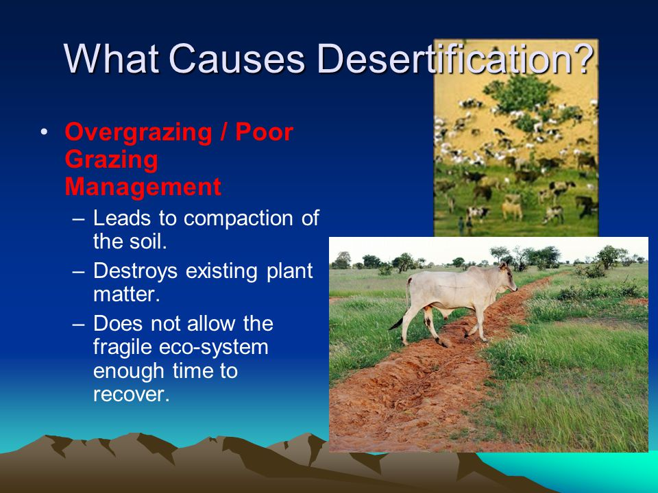 Desertification Causes