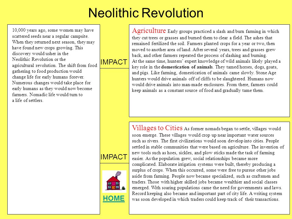 The neolithic revolution essay the neolithic revolution essay