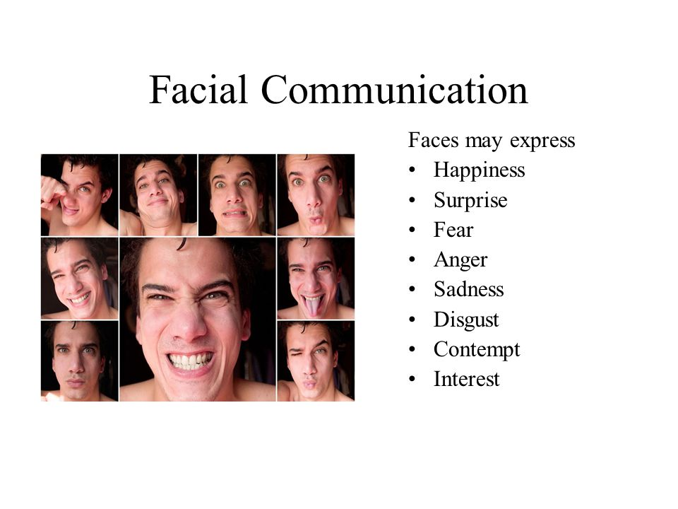Facial Communication Faces may express Happiness Surprise Fear Anger Sadness Disgust Contempt Interest