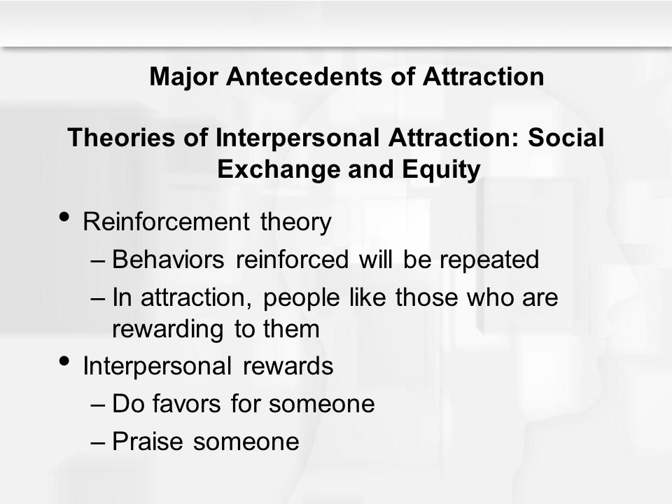 interpersonal attraction essay