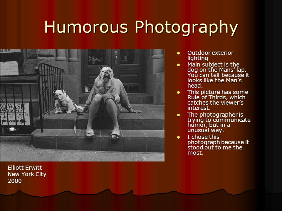 Humorous Photography Elliott Erwitt New York City 2000 Outdoor exterior lighting Outdoor exterior lighting Main subject is the dog on the Mans' lap.