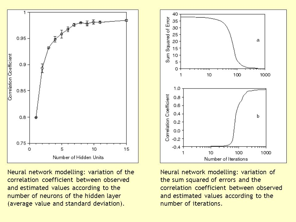 Neural network modelling: variation of the correlation coefficient between observed and estimated values according to the number of neurons of the hidden layer (average value and standard deviation).