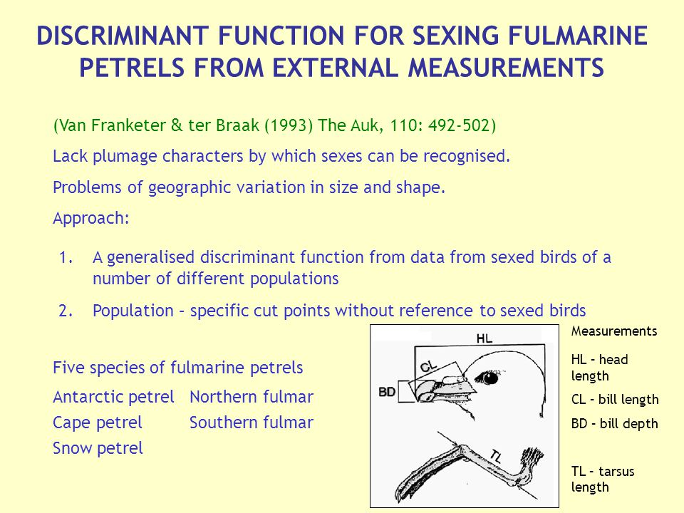 DISCRIMINANT FUNCTION FOR SEXING FULMARINE PETRELS FROM EXTERNAL MEASUREMENTS (Van Franketer & ter Braak (1993) The Auk, 110: ) Lack plumage characters by which sexes can be recognised.