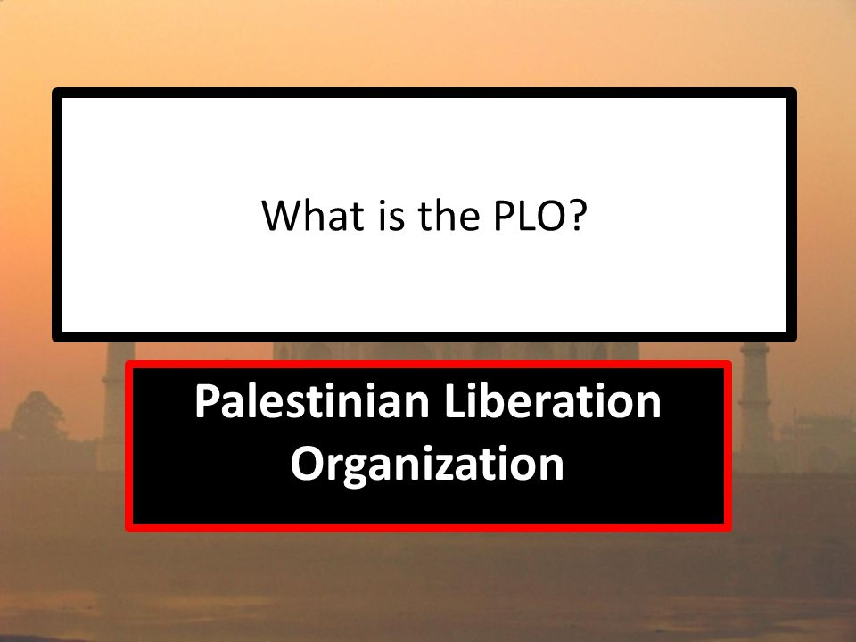 What is the PLO Palestinian Liberation Organization
