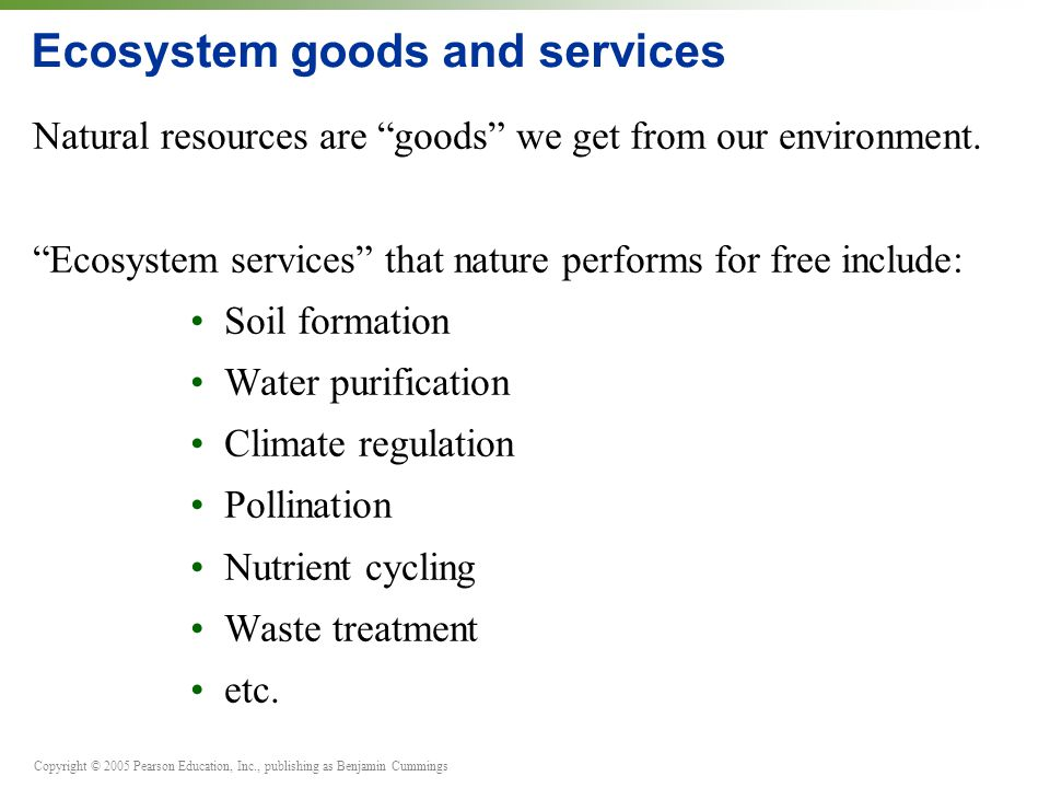Copyright © 2005 Pearson Education, Inc., publishing as Benjamin Cummings Ecosystem goods and services Natural resources are goods we get from our environment.