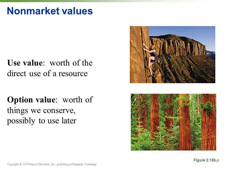 Copyright © 2005 Pearson Education, Inc., publishing as Benjamin Cummings Nonmarket values Use value: worth of the direct use of a resource Option value: worth of things we conserve, possibly to use later Figure 2.15b,c
