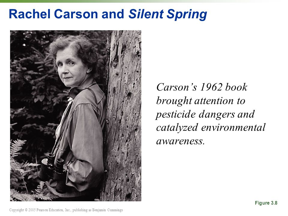 Copyright © 2005 Pearson Education, Inc., publishing as Benjamin Cummings Rachel Carson and Silent Spring Carson's 1962 book brought attention to pesticide dangers and catalyzed environmental awareness.