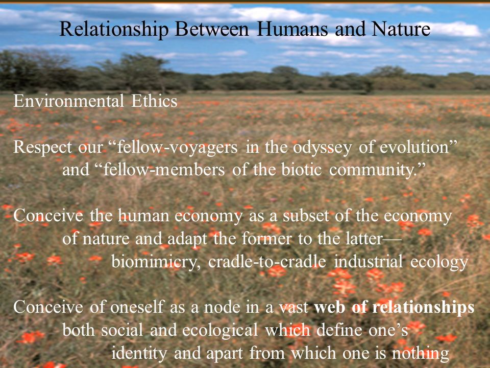relationship between humans and environment maintaining How can you establish and maintain good human relationship in and maintaining good human relationship in and the quality of social environment.
