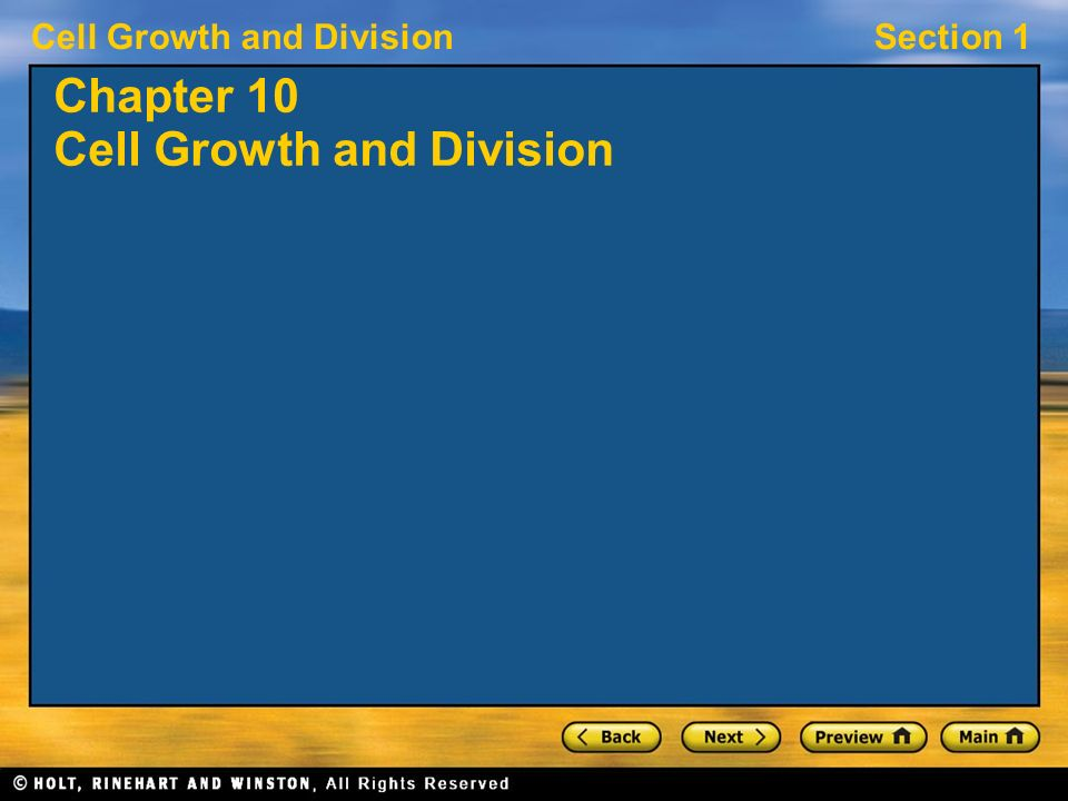 Section 8 2 Review Cell Division Worksheet Answers straubel – Section 10-2 Cell Division Worksheet Answers