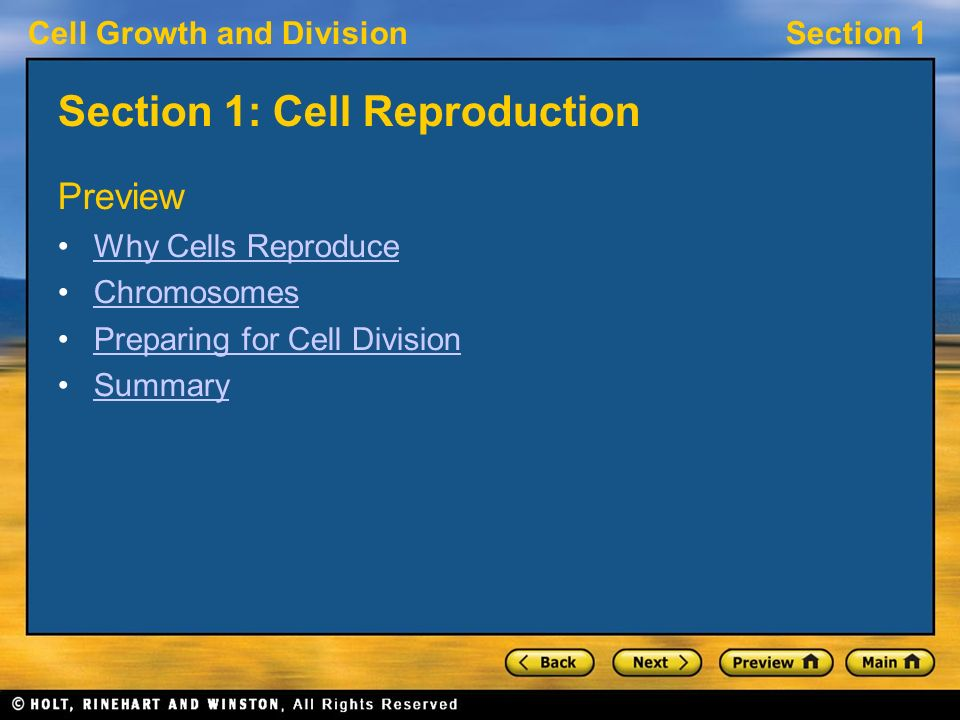 Worksheets Section 10-2 Cell Division Worksheet Answers section 10 2 cell division worksheet answers and mitosis cell