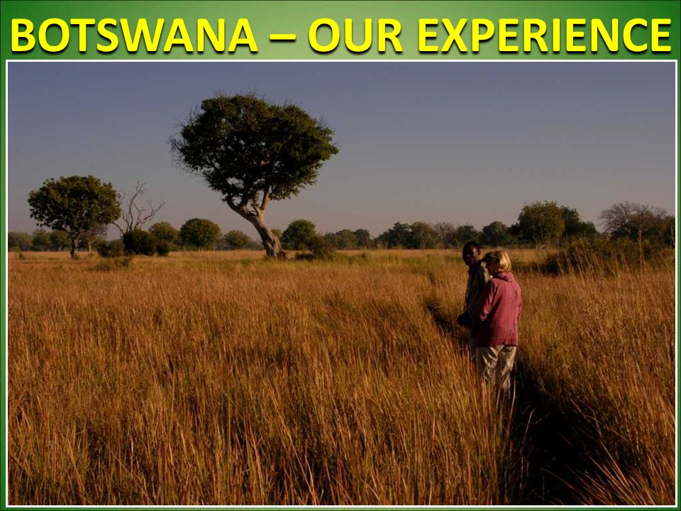 BOTSWANA – OUR EXPERIENCE 40