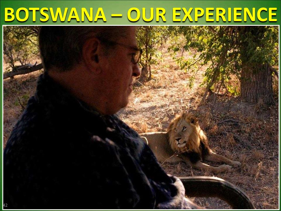 BOTSWANA – OUR EXPERIENCE 42