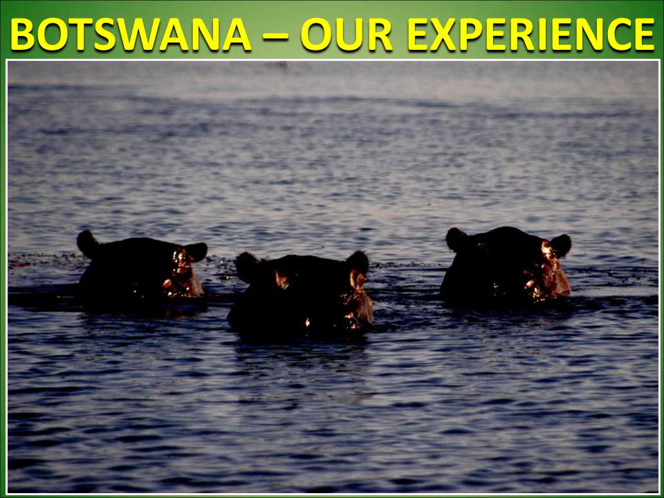 BOTSWANA – OUR EXPERIENCE