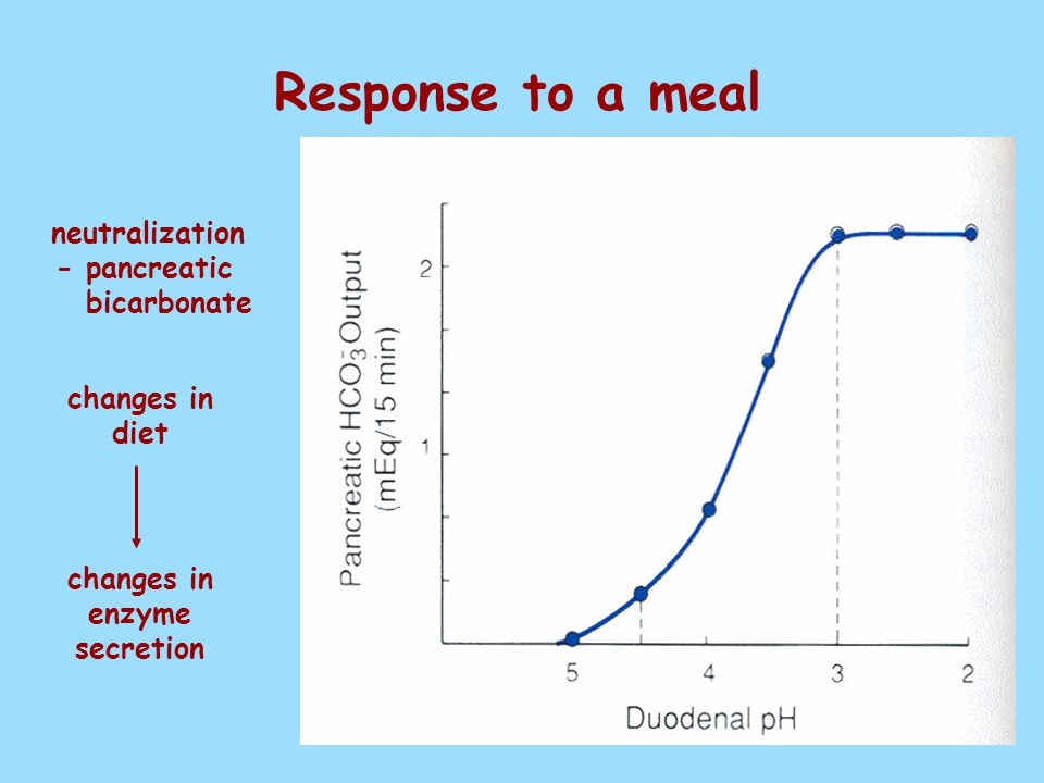 Response to a meal neutralization - pancreatic bicarbonate changes in diet changes in enzyme secretion