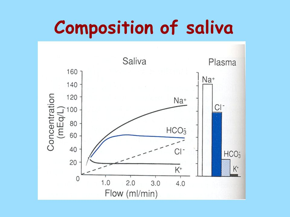 Composition of saliva