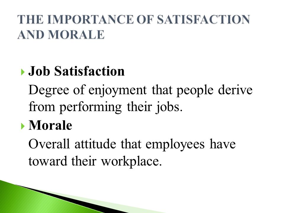  Job Satisfaction Degree of enjoyment that people derive from performing their jobs.