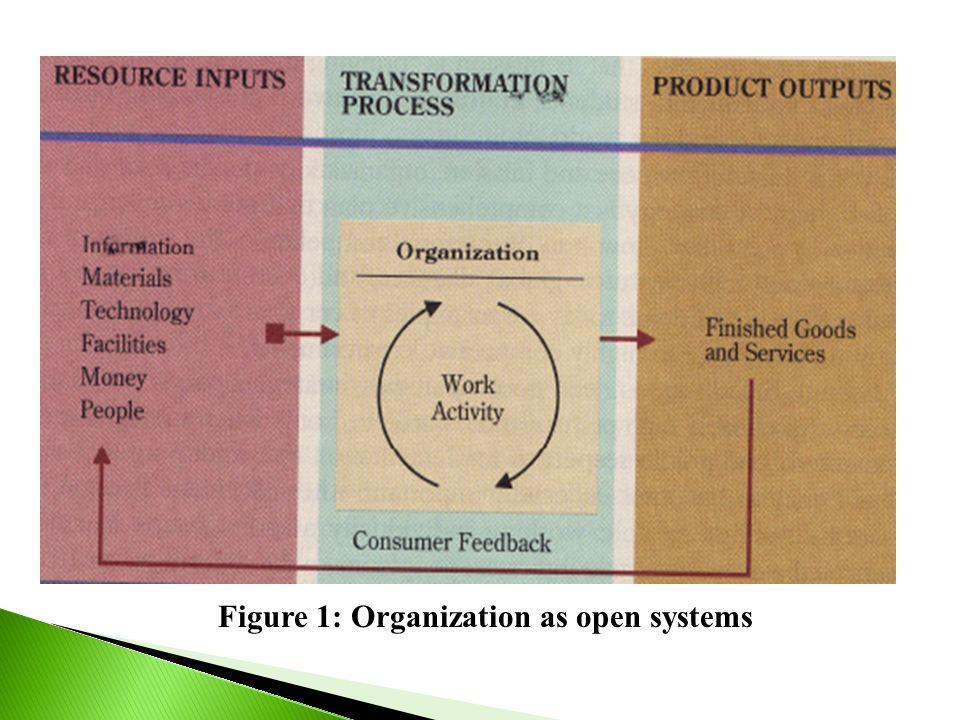 Figure 1: Organization as open systems