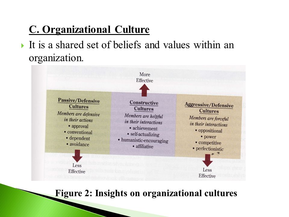 C. Organizational Culture  It is a shared set of beliefs and values within an organization. Figure 2: Insights on organizational cultures