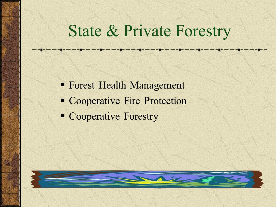 State & Private Forestry  USFS cooperates with:  State and local governments  Forest industries  Private landowners  Forest users  The objectives:  Manage, protect, & develop non-Federal forest land  Activities include:  Urban interface fire management  Urban forestry