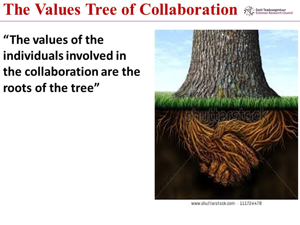 The Values Tree of Collaboration The values of the individuals involved in the collaboration are the roots of the tree